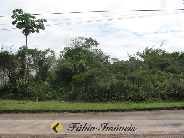 terreno para venda no bairro São Luiz em Peruíbe